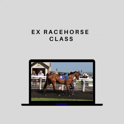 Ex Racehorse