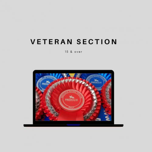 Veteran Horse Section