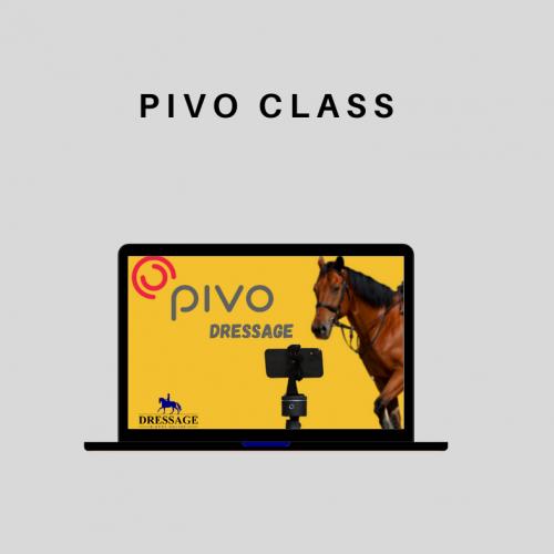 Pivo Class