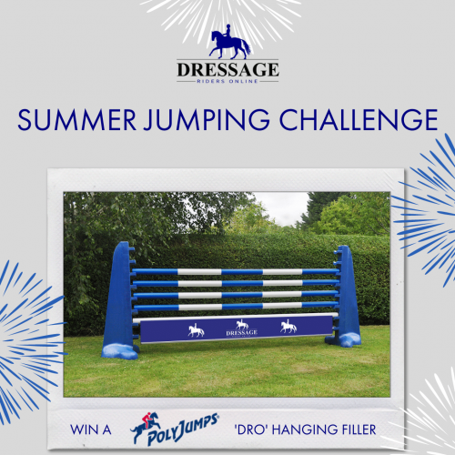 Summer Jumping Challenge